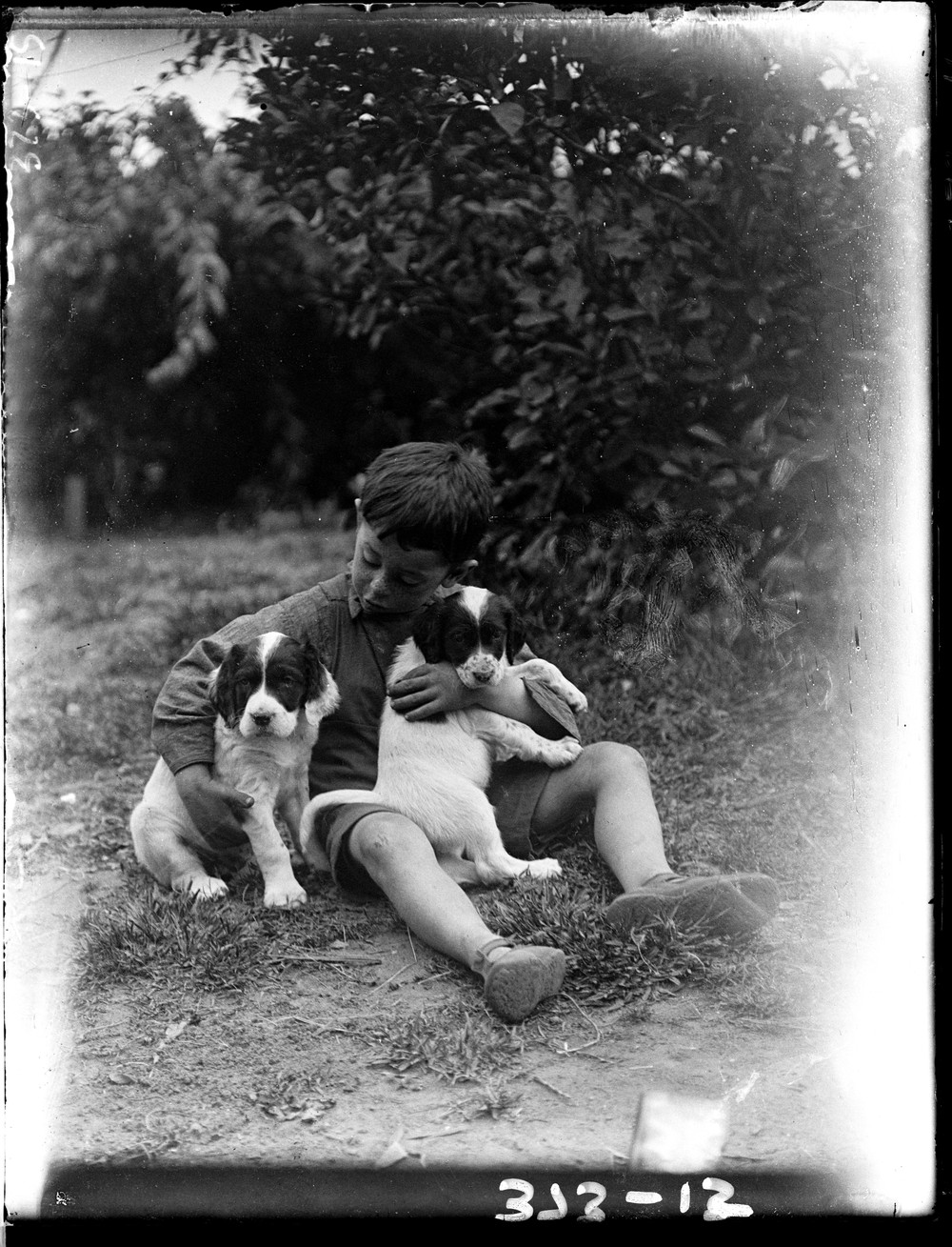black and white photo of a boy holding two dogs