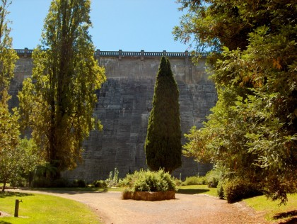 Vertical plantings at the foot of the dam wall in 2010.