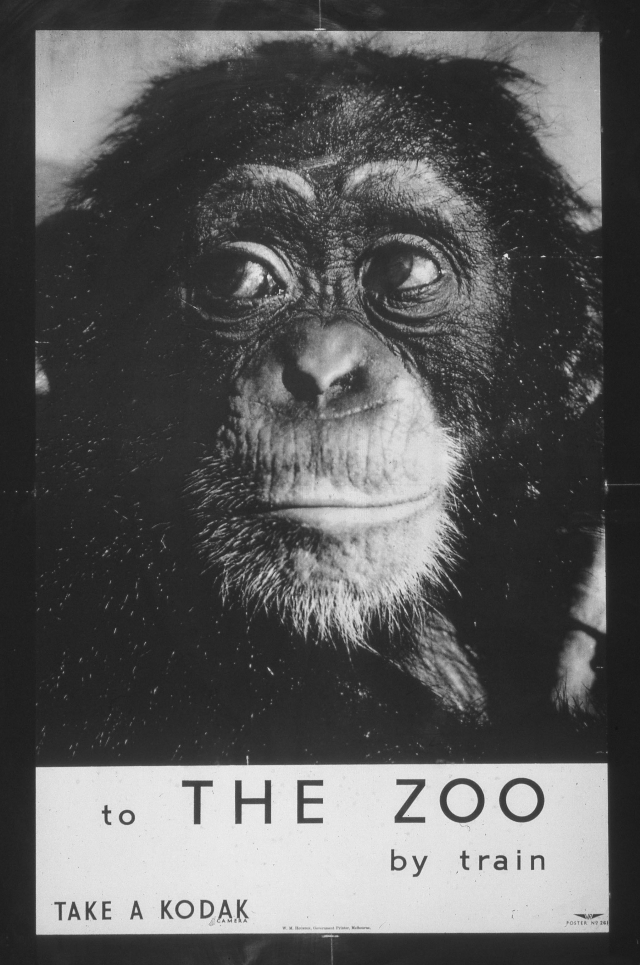 To the Zoo by Train 1950s poster