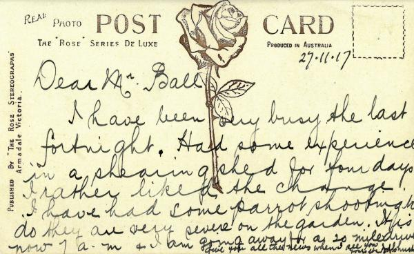 back of a postcard showing a rose stamped down the middle with the words The Rose Series De Luxe Produced in Australia. And a handwritten message in black ink.