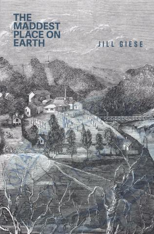 image of Jill Giese's book cover